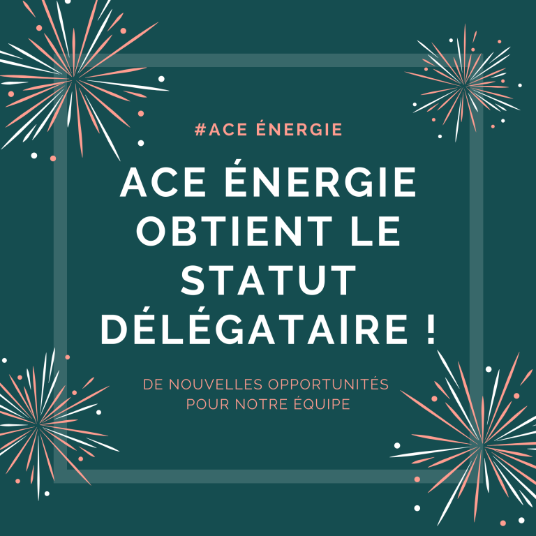 descriptif ACE délégation